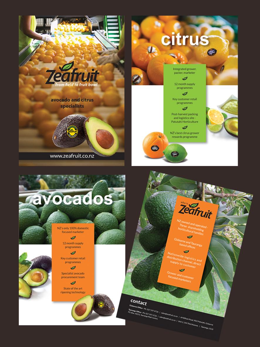 Zeafruit Company Brochure