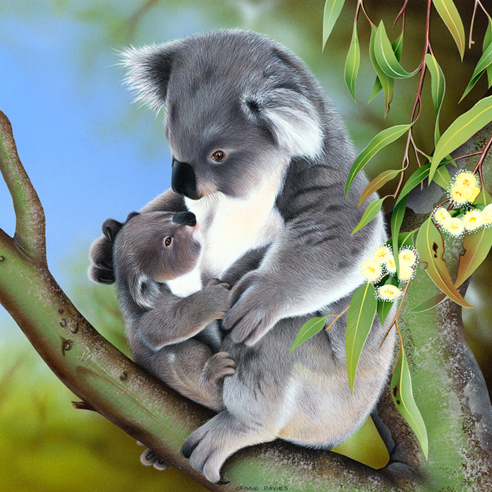 Hallmark Cards Wildlife Calendar Koala Illustration