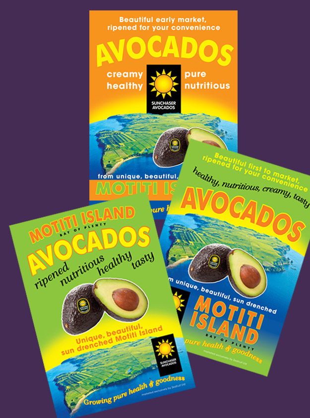 Sunchaser Avocados store flyers